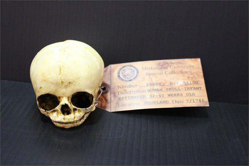 Small Baby Skull - Changeling